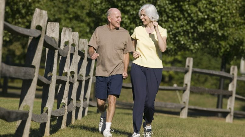 knee strengthening for seniors